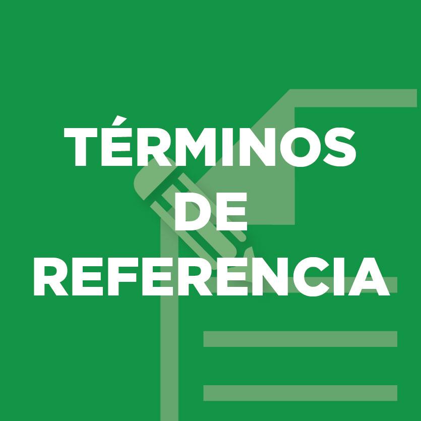 Términos de Referencia (TdR)